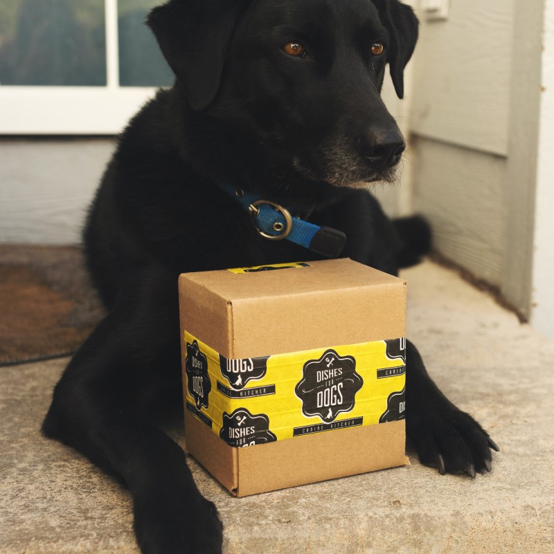 ecommerce delivery of pet supplies with happy dog